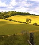 Surrey Hills by RichardWaldron-art, Photography