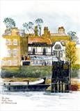 Dove at Hammersmith by Richard Waldron, Painting, Pen and water-colour wash